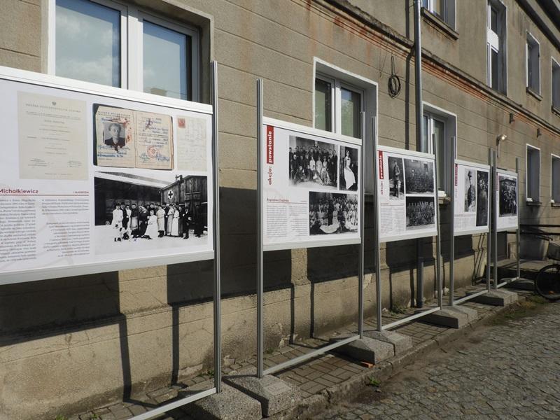 Zdjęcie z Wystawy 11