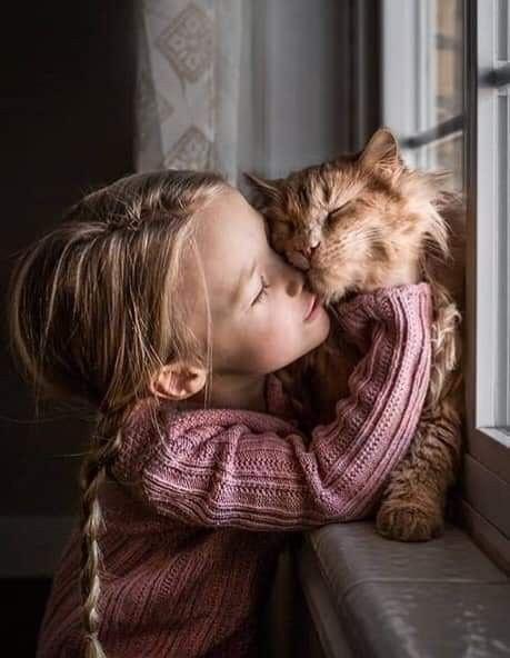 Na zdjęciu mała dziewczynka przytula buzię dorudego kota.